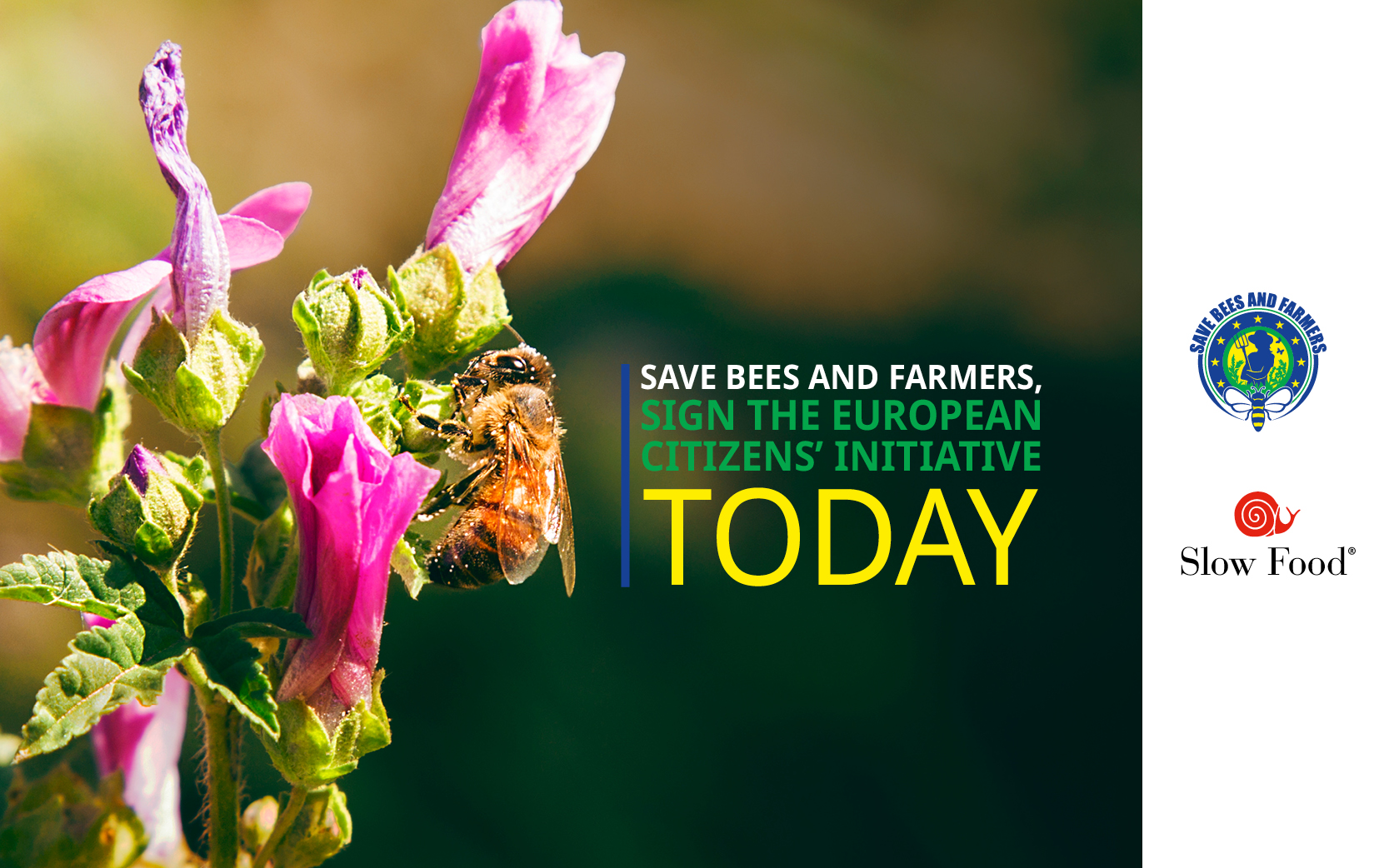 [ECI] Save bees and farmers!