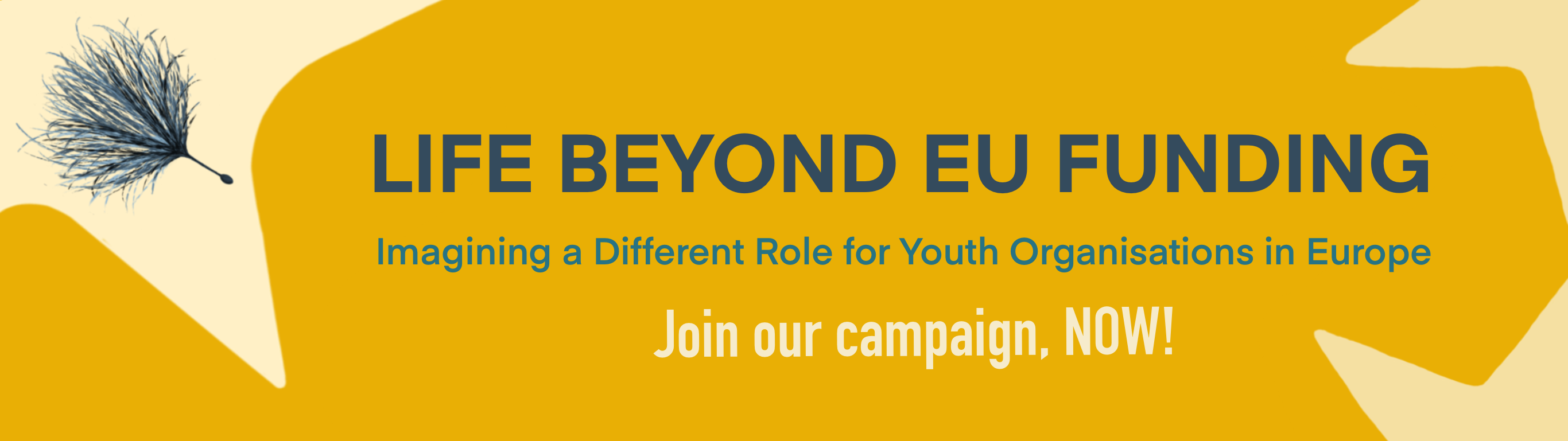 Life beyond EU Funding: Imagining a Different Role for Youth Organisations in Europe